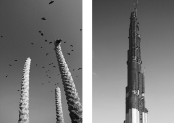 Architecture follows nature - Burj-Dubai-Tower